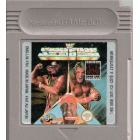 WWF Superstars GB